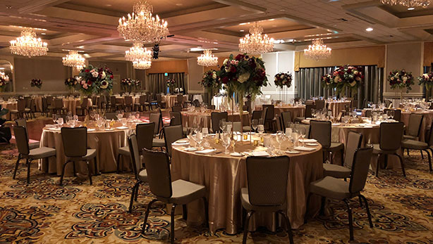 Beautiful Reception Spaces