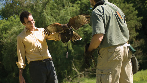 The Falconry Experience